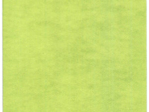 100% Bio Baumwoll Servietten Basic Lime 40x40 kompostierbar